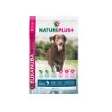 Royal canin Neutered Weight Balance pienso para gatas jovenes esterilizadas (bolsita)