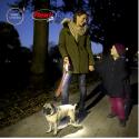 Spray antiparasitario Repelente natural con citronela para perros