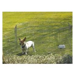 ArquiStick de Buey premios para perros