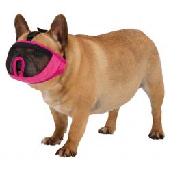 Collar de piel basico para perros