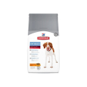 Royal Canin dieta para gatos Urinary s/o moderate calorie