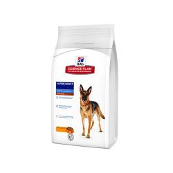 Bozal de plastico y piel para perros