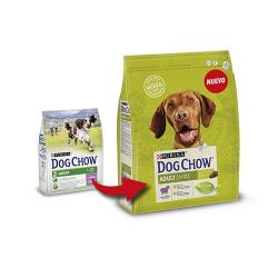 Galletas mini huesos de vainilla snacks para perros