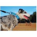 Tropiclean Natural Flea & Tick Spray eliminador de pulgas y garrapatas de hogar para perros