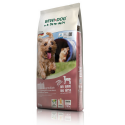 Bewi Dog Junior pienso para perros junior