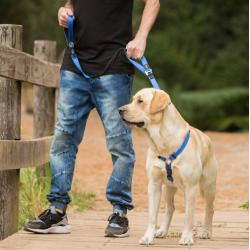 Cama para perros y gatos azul terciopelo