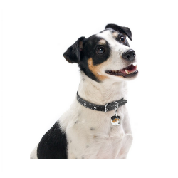 Happy One Mediterraneum canine adult pienso para perros