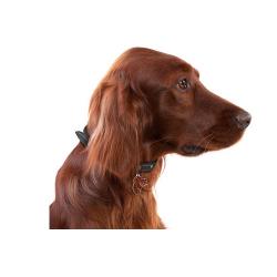 Happy One Mediterraneum canine adult small pienso para perros