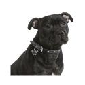 Alpha Spirit Canine Humeda Conejo + Platano 100% natural sin aditivos