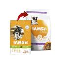 JT- Enterovital. Complemento alimenticio para diarreas agudas o crónicas para perros y gatos