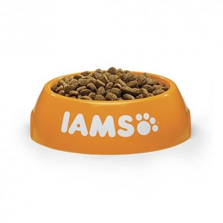 JT- Hepato Pharma Same alimento complementario para perros y gatos con problemas hepáticos
