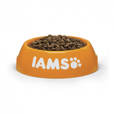 Taberdog champu espuma seca 150 mls.