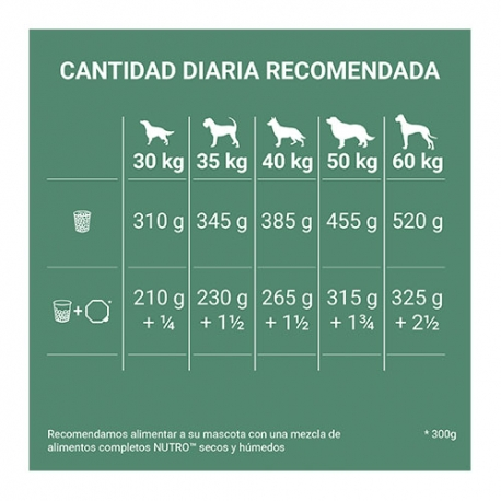 Hill's Ideal Balance Canine No Grain Pollo y Patata