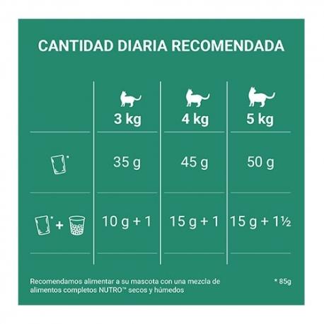 JT- Uro Pharma complemento alimentario para problemas renales y urinarios para perros y gatos