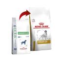 Carbodote Protector intestinal para perros y gatos.