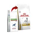 Silycure Protector hepatico perros y gatos