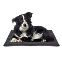 Placa circulo cromado cepillado para perros [2 Tallas]