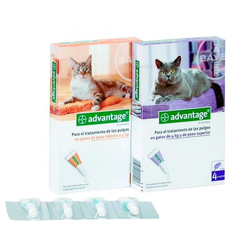 Advantage gatos antiparasitario