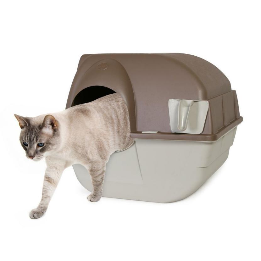 Areneros economicos para gatos