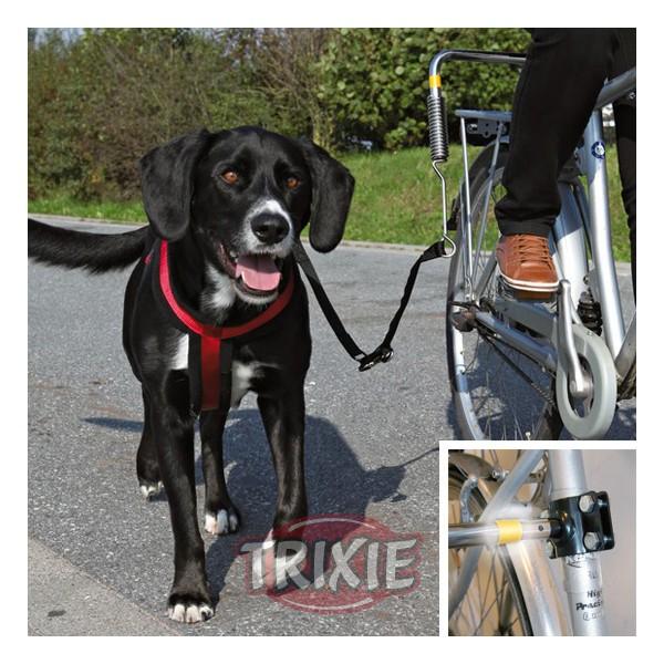 Bicicleta con perros