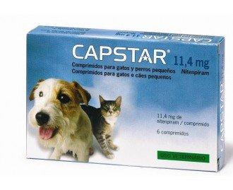 Capstar gatos antiparasitario