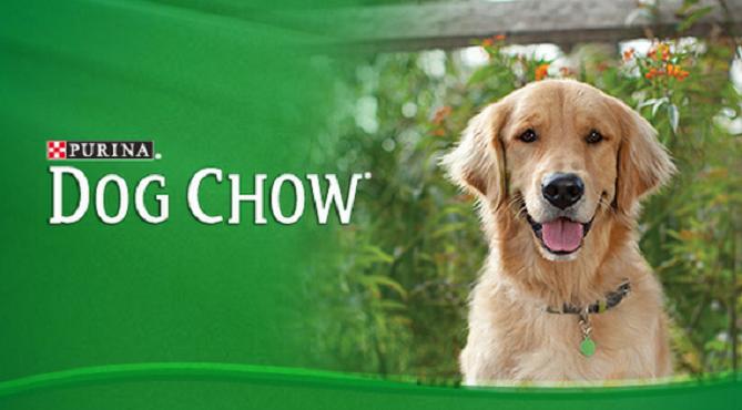 Dog Chow Pienso para perros