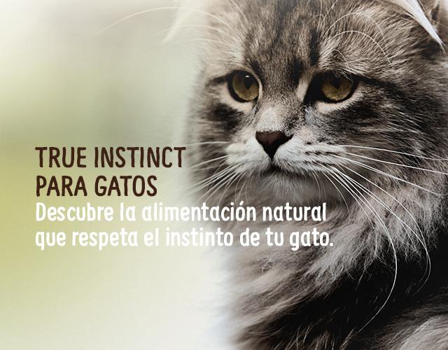 Instinct pienso para gatos