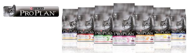 Nestle Purina Pienso para gatos