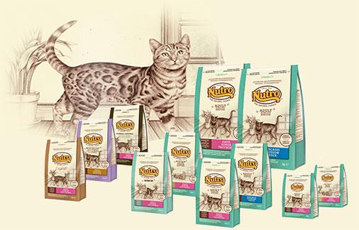 Nutro Pienso para gatos
