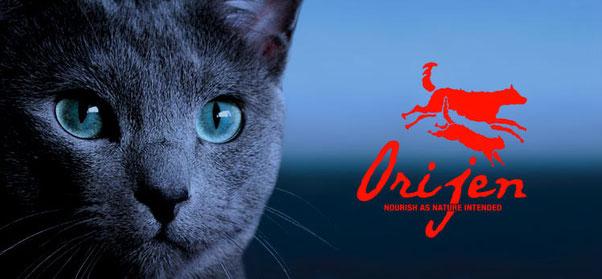 Orijen Pienso para gatos