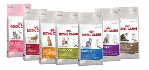 Royal Canin Pienso para gatos