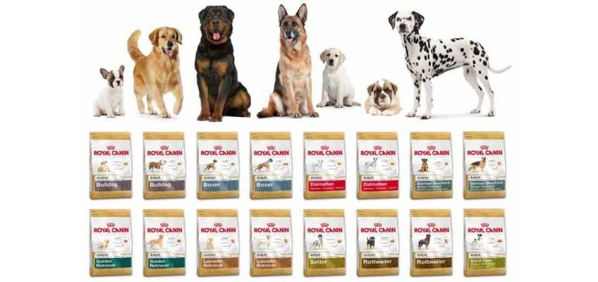 Royal Canin Razas Pienso para perros
